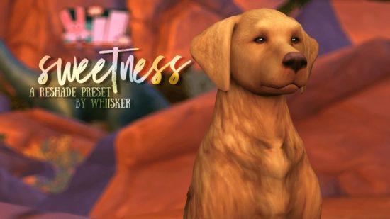 Пресет для Решейда в Sims 4: Sweetness ReShade