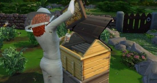 Пчелы в Sims 4: как подружиться и почему они в ярости?