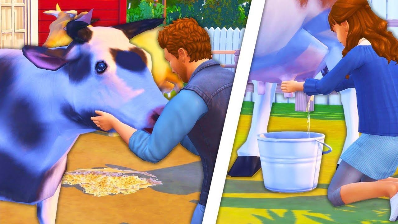 Мод на функциональную корову в Sims 4: DAIRY COW
