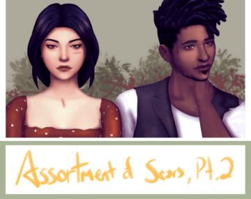 Набор шрамов для Sims 4 - Assortment of Scars
